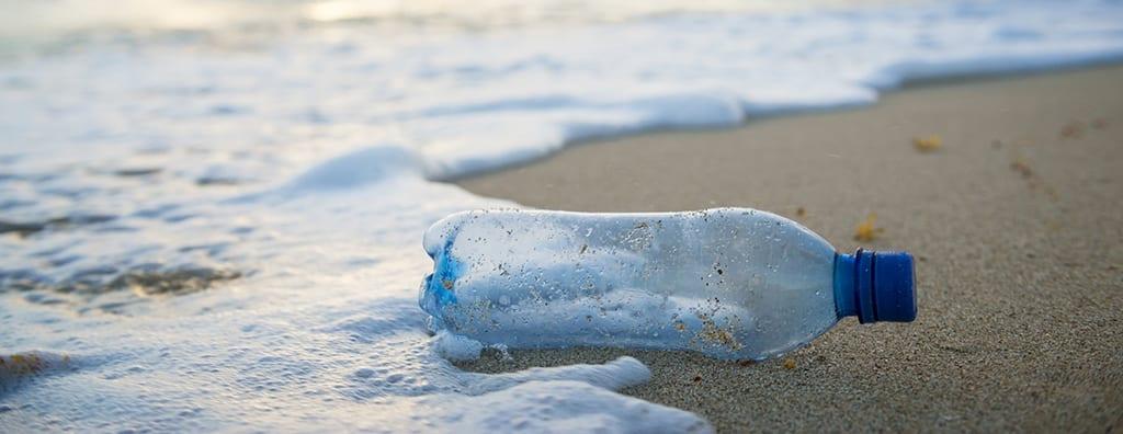plastic pollution take care